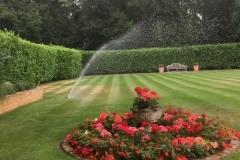 Oasis-Watering-Burwood