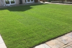 Lawn after installation