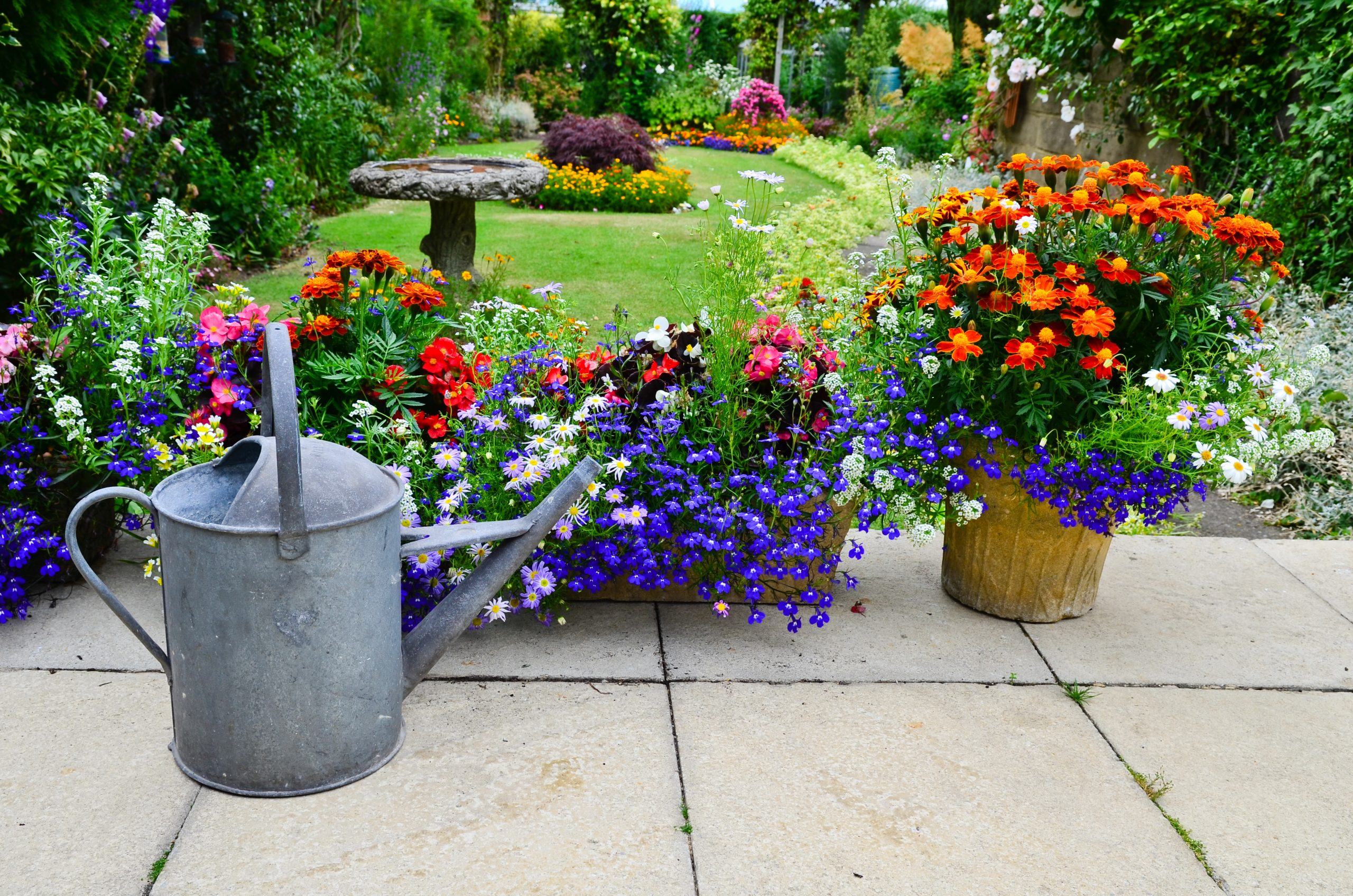 https://oasiswatering.co.uk/wp-content/uploads/2021/01/English-Gardens-in-bloomshutterstock_146719973-scaled.jpg